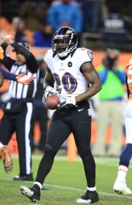 Ed Reed (vertical)