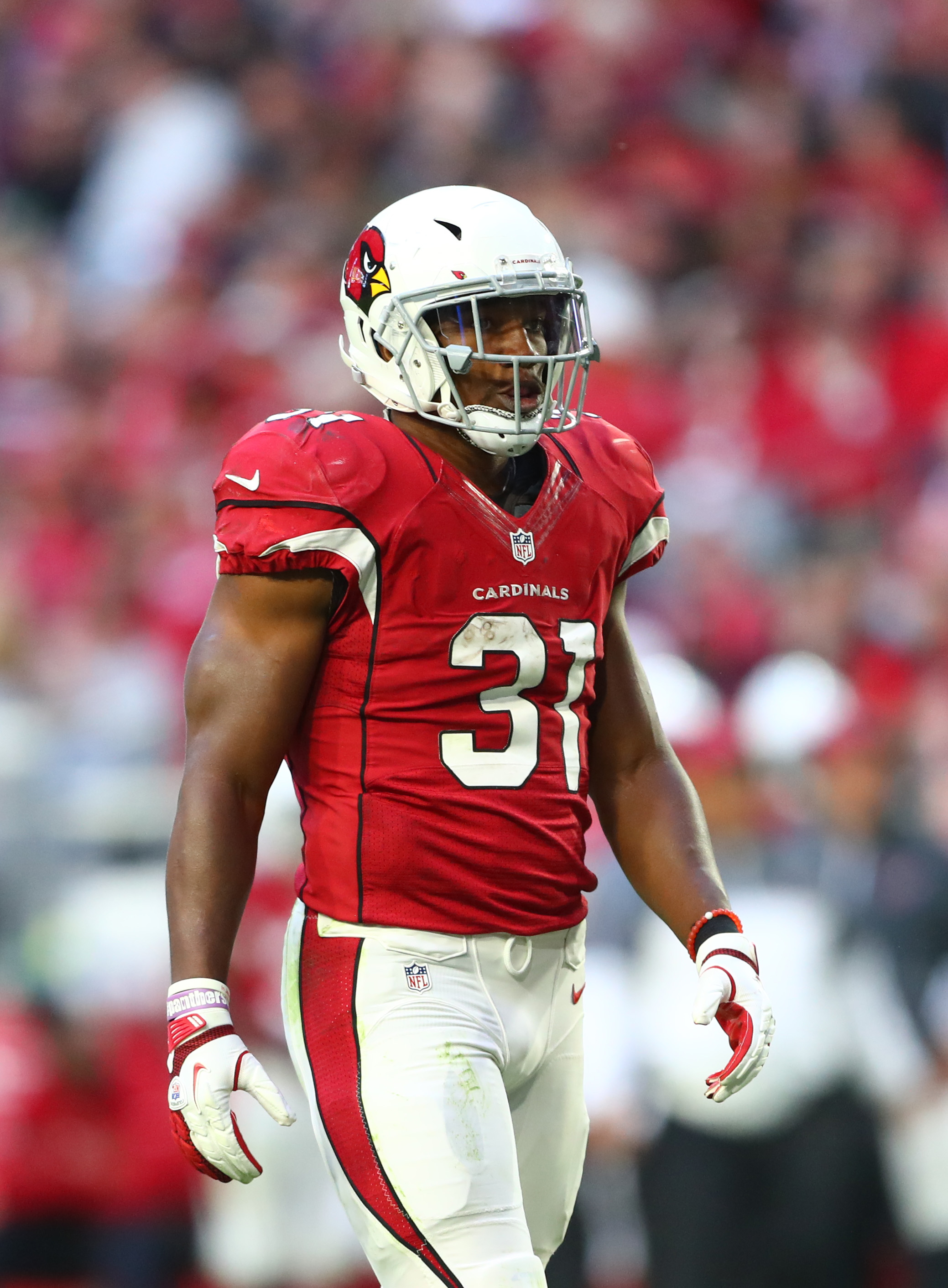 David johnson bisexual