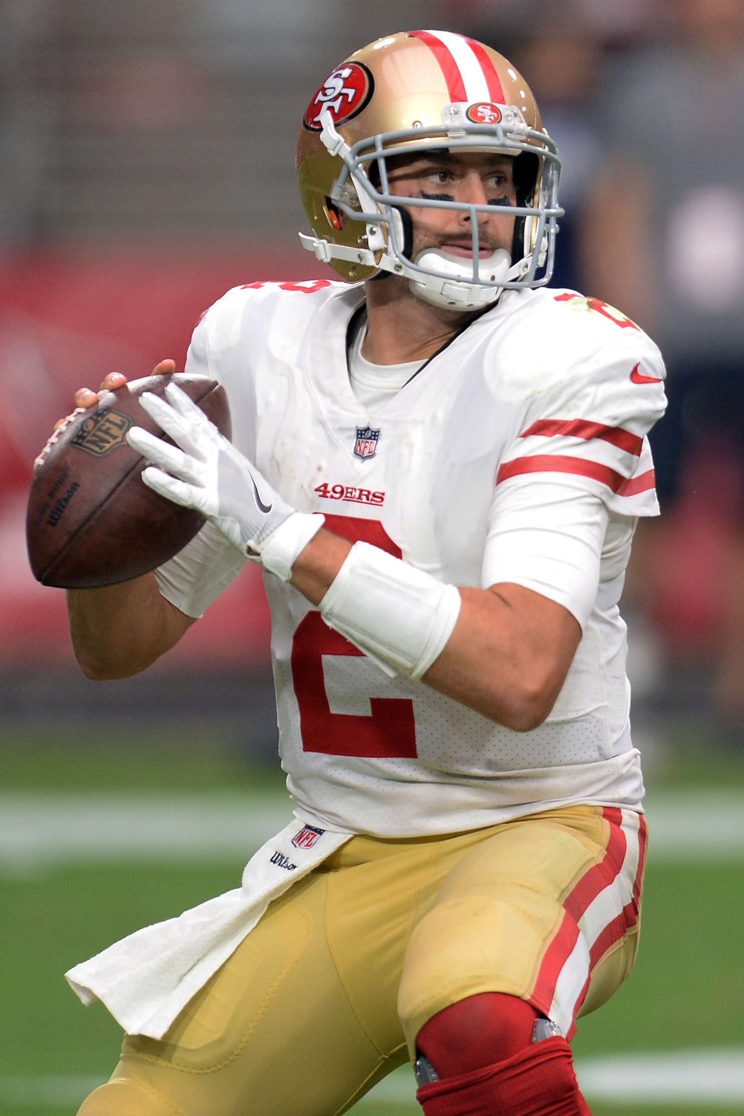 49ers To Release Qb Brian Hoyer